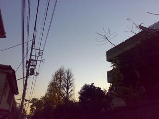 200812151727.jpg