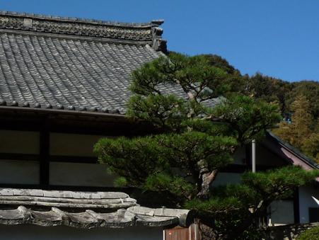 お寺3.jpg
