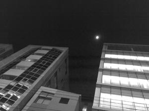 渋谷の夜.jpg
